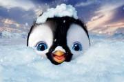 Download filmu Happy Feet ke stažení